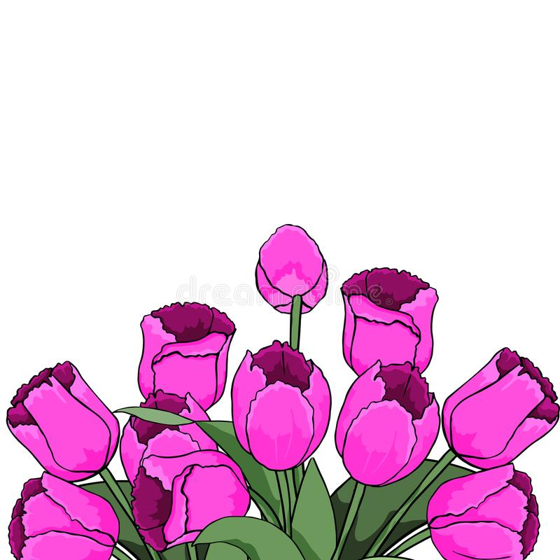 Frühlingstext mit Tulpenblume Vektorabbildung EPS10 lizenzfreie abbildung