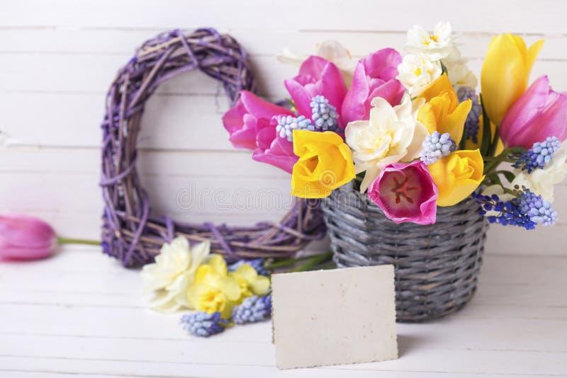 Frühlingstulpen, Narzissen blüht im grauen Eimer, dekorativ hören stockfotos