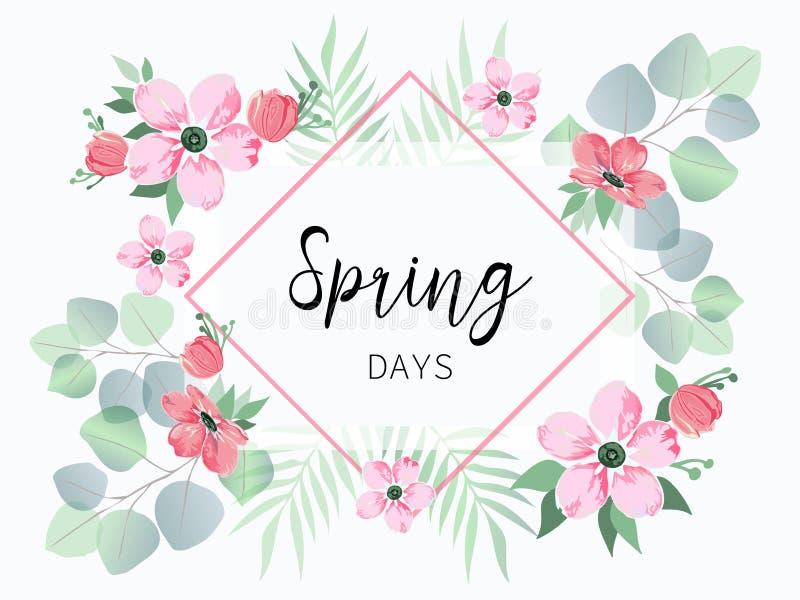 Frühlingsverkaufsfahne mit Kirschblüte-Blumen und -eukalyptus stock abbildung