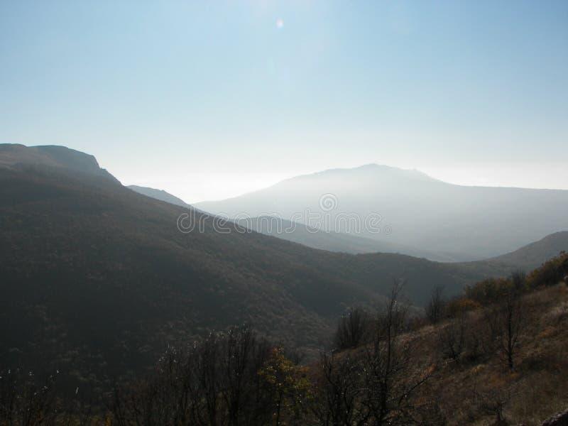 Frühlingswald morgens in den Krimbergen stockfoto