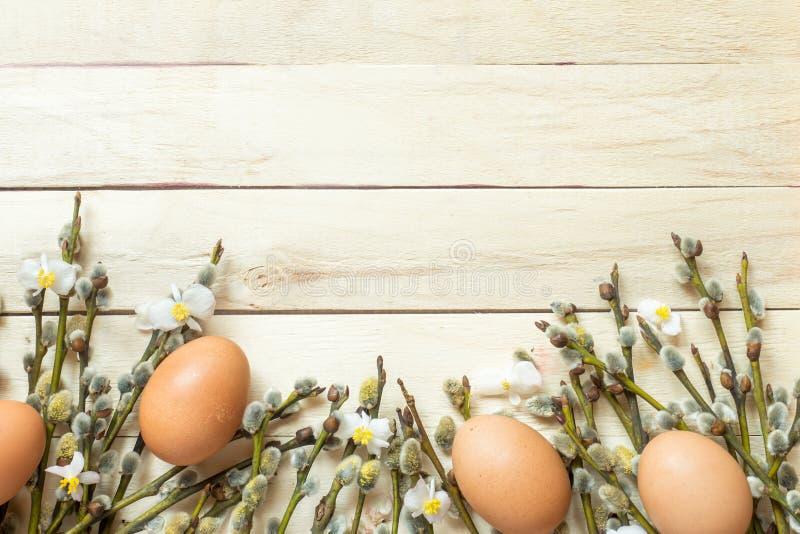 Frühlingsweide verzweigt sich mit den blühenden Knospen und den Hühnereien auf hölzernem Hintergrund Kopienraum stockfoto