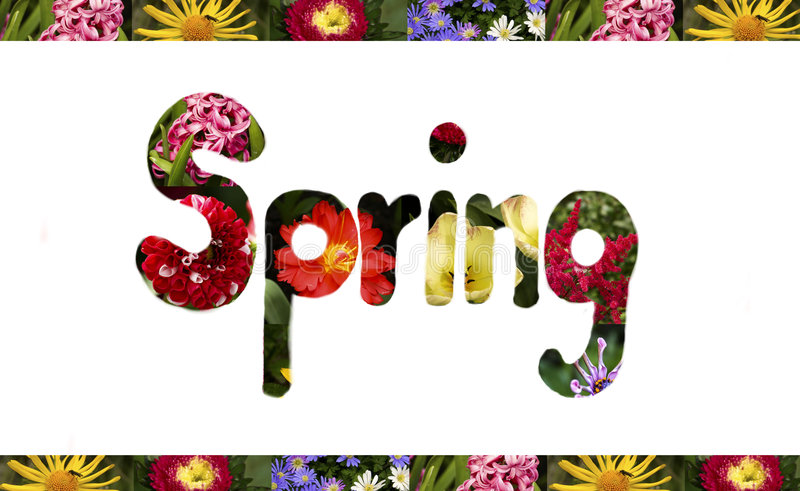 Frühlingszeichen vektor abbildung