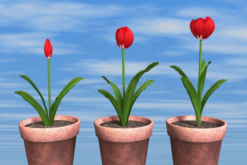 Frühlingszeit… Rosenblätter, natürlicher Hintergrund stockfotos