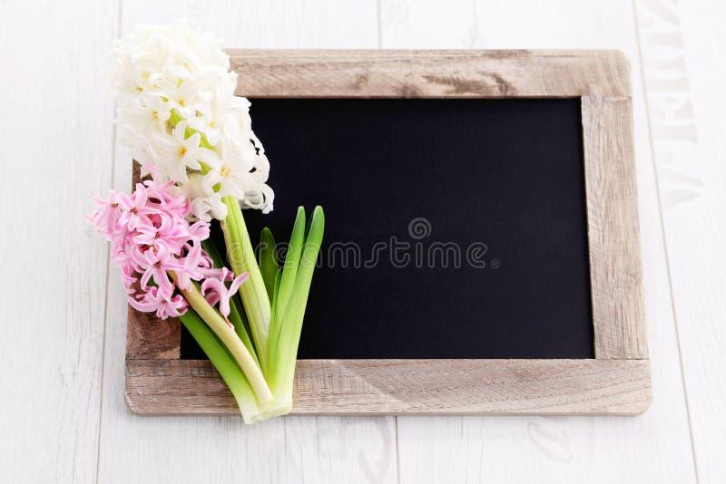 Frühlingszeit… Rosenblätter, natürlicher Hintergrund stockfoto