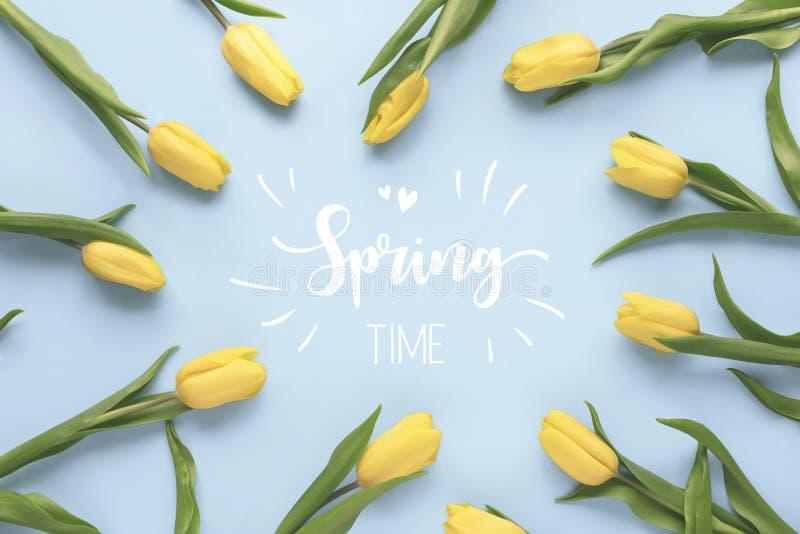 ` Frühlingszeit ` geschrieben in kalligraphische Art Das Feld, das von der gelben Tulpe gemacht wird, blüht auf blauem Hintergrun stockbilder