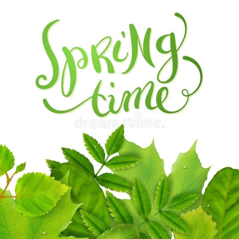 Frühlingszeit mit Blättern lizenzfreie abbildung