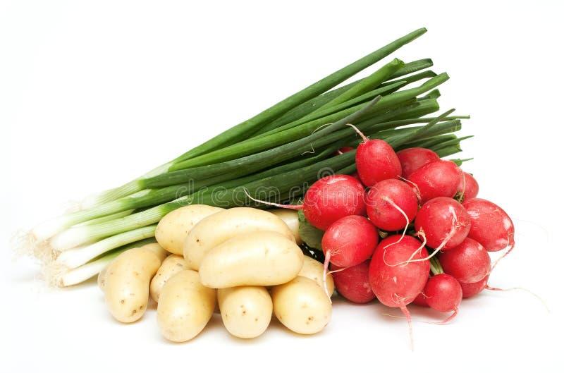 Frühlingszwiebel, junge Kartoffeln und Rettich stockfotografie