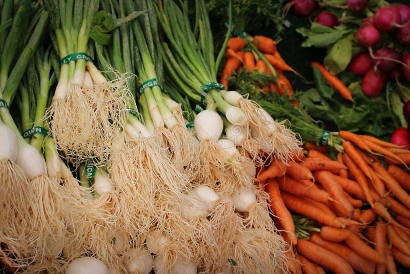 Frühlingszwiebeln und Karotten lizenzfreie stockfotos