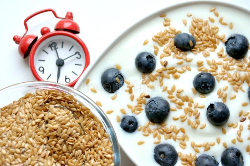 Frühstücken Sie mit Joghurt, Blaubeere und Leinsamen stockfotografie