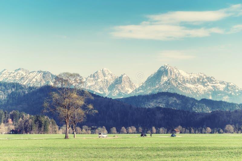Fr?hlings-Landschaft mit einer Stra?e lizenzfreies stockfoto