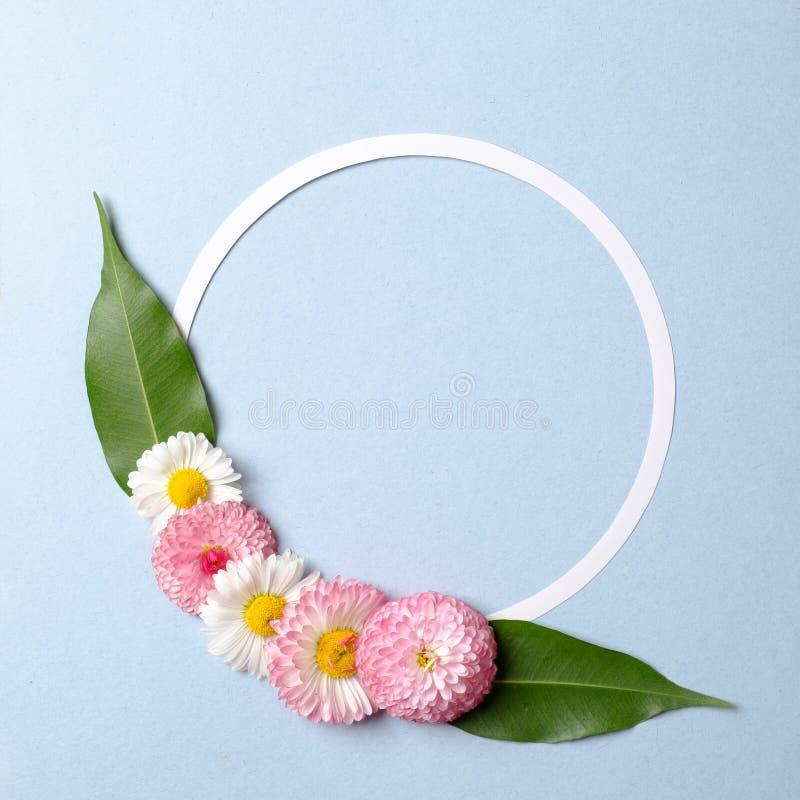 Fr?hlingsfeiertagskonzept Kreativer Plan an gemacht von den bunten Blumen mit gr?nen Bl?ttern und Kreis-f?rmigem Papierkartenentw stockbild