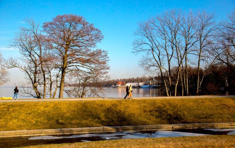 Fr?hlingslandschaft, klassische Ansicht der Ostsee im alten Park, Peterhof St Petersburg, Russland stockbild