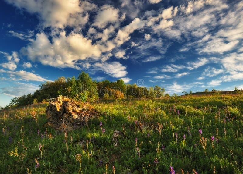 Fr?hlingsmorgen? Feld des gr?nen Grases und des blauen bew?lkten Himmels Schlucht des malerischen Flusses stockfoto