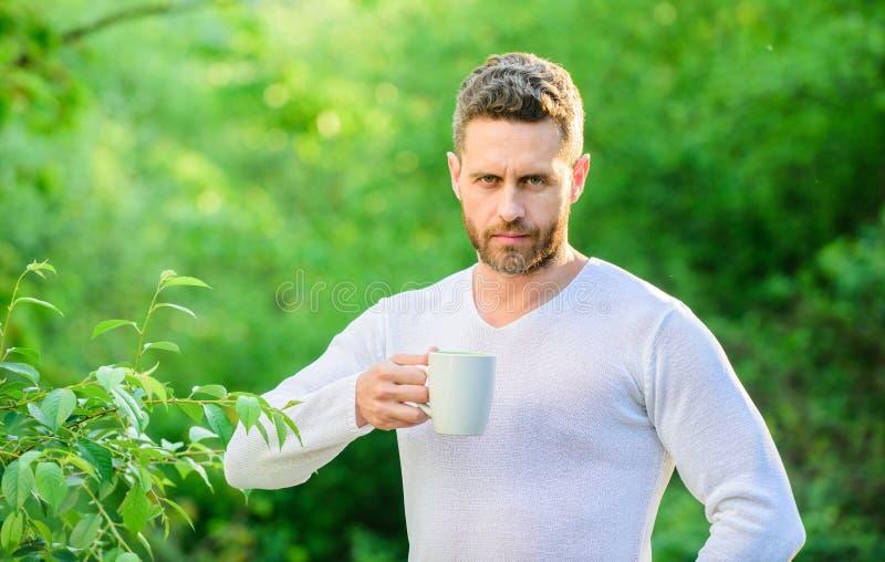 Fr?hst?cksaktualisierungszeit ?kologisches Leben f?r Mann Mann im grünen Waldgetränktee im Freien ernster Mann mit Tasse Tee stockbild