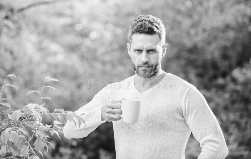 Fr?hst?cksaktualisierungszeit ?kologisches Leben f?r Mann Mann im grünen Waldgetränktee im Freien ernster Mann mit Tasse Tee stockfotografie