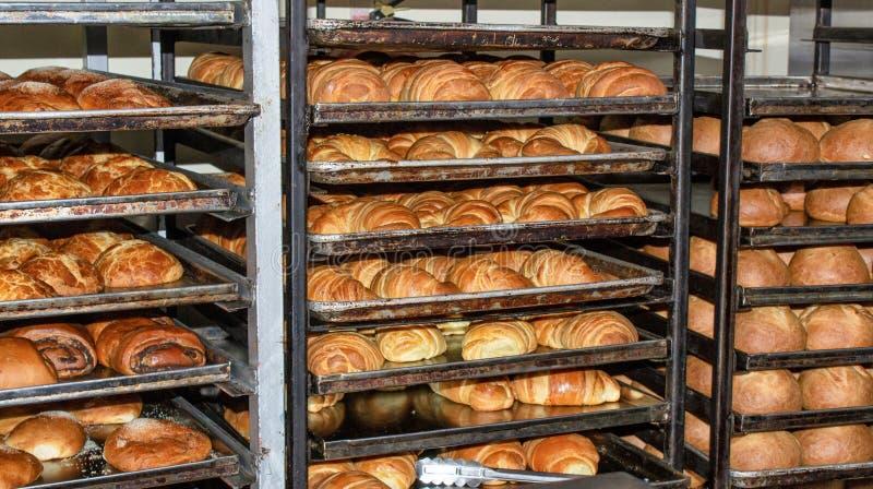 A fraîchement fait le pain cuire au four, étagères avec des petits pains l'Equateur Quito photographie stock