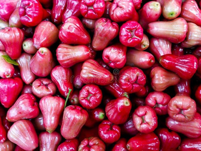 Fraîchement fruit de pomme rose de fruit ou affichage d'airon de jambu à vendre image libre de droits