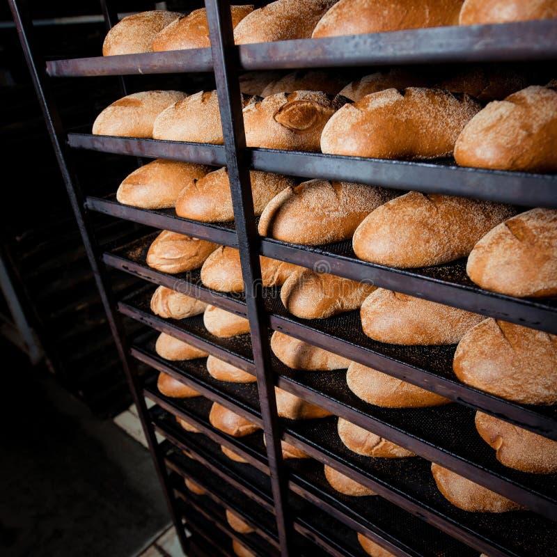 Fraîchement pain sur un plateau de cuisson photos stock