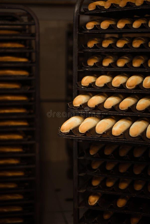 Fraîchement pain sur un plateau de cuisson image libre de droits