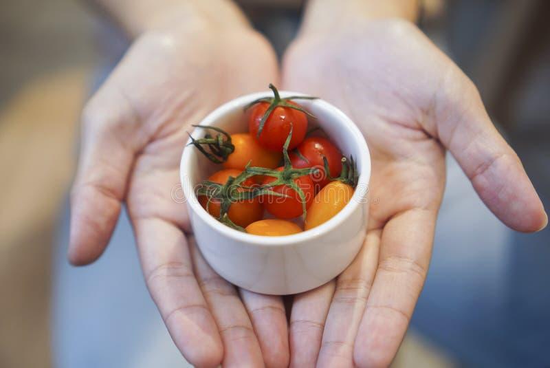 Fraîchement tomates-cerises en main photographie stock