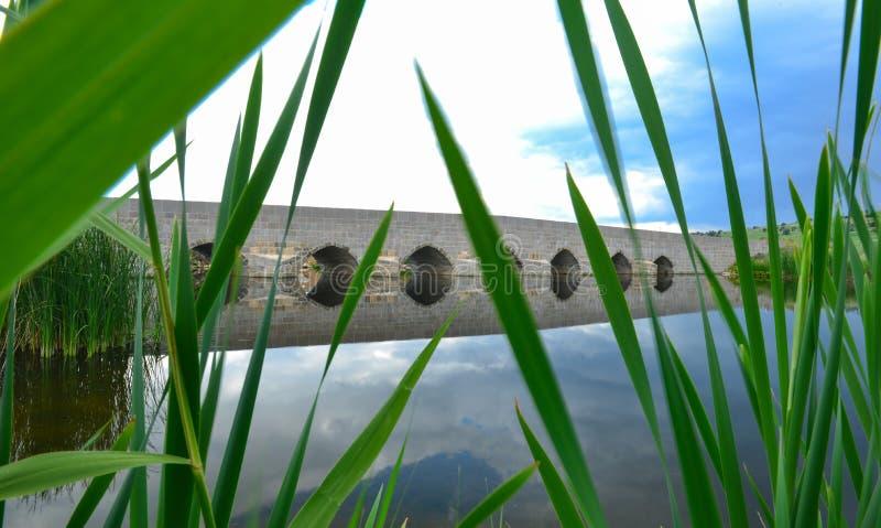 Fra i carici mistici ed il ponte misterioso fotografia stock libera da diritti