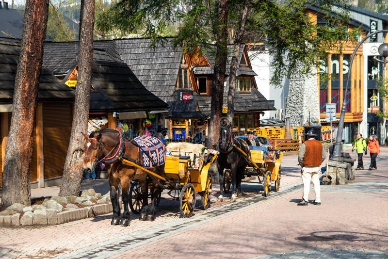 Frachty z koniami dla turystów na ulicie w Zakopane zdjęcia stock