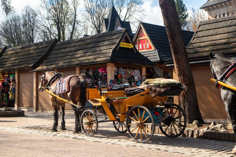 Frachty z koniami dla turystów na ulicie w Zakopane zdjęcie royalty free
