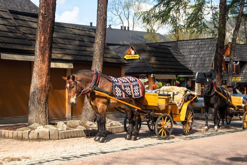 Frachty z koniami dla turystów na ulicie w Zakopane obrazy stock