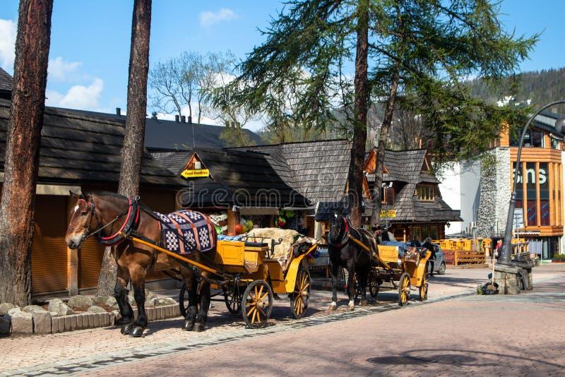Frachty z koniami dla turystów na ulicie w Zakopane obrazy royalty free