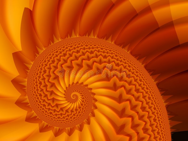 fractal κοχύλι απεικόνιση αποθεμάτων
