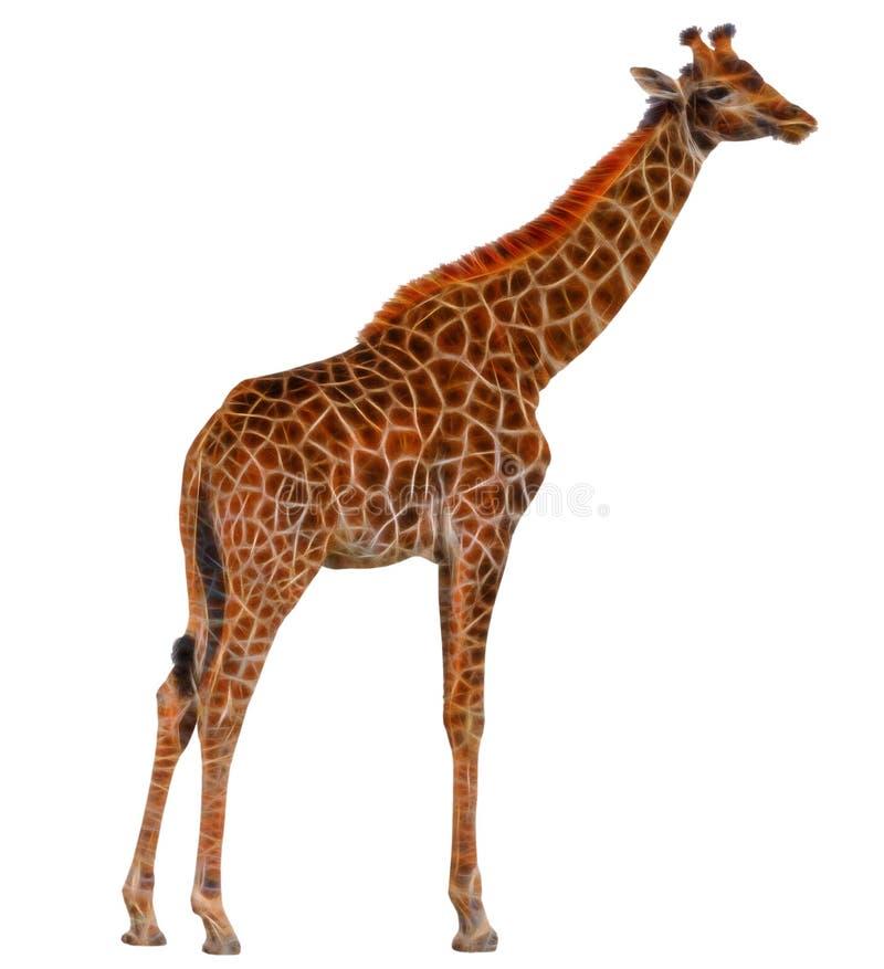 Fractal Giraffe που απομονώνεται στο άσπρο υπόβαθρο διανυσματική απεικόνιση