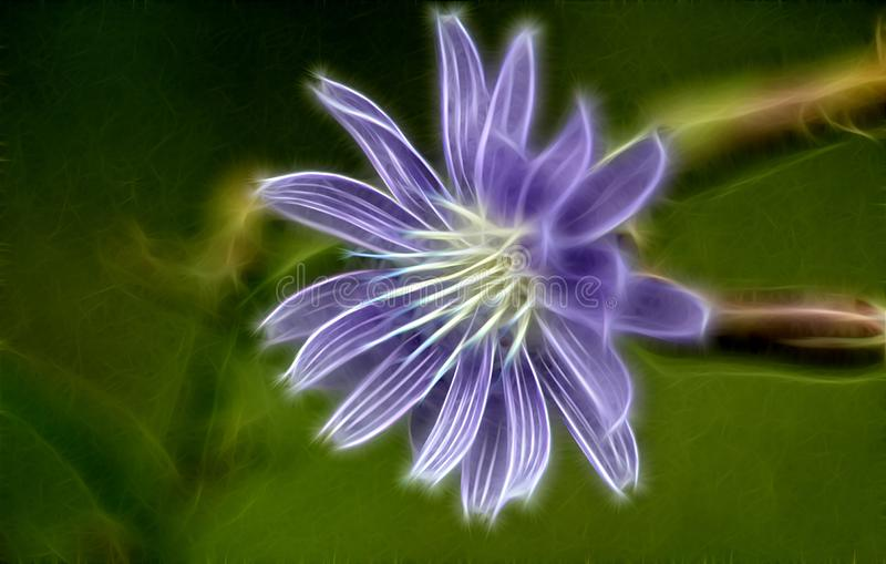 Fractal image of a flower of chicory royalty free stock photos