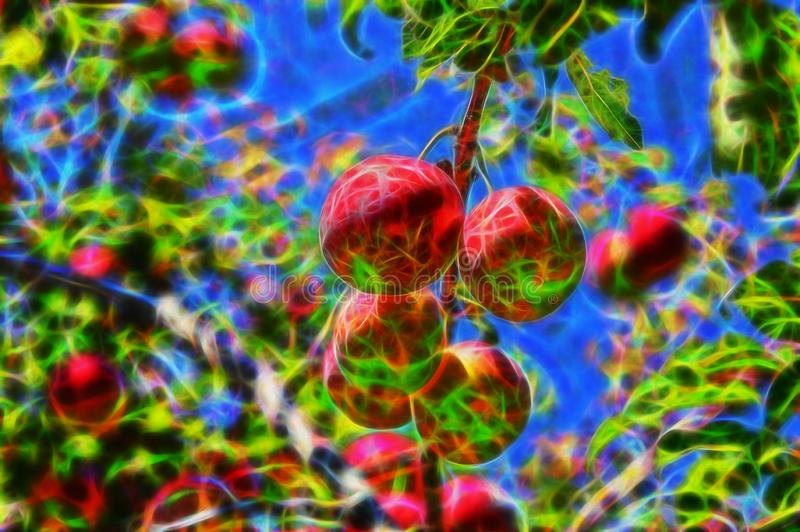 Fractal picture of cherry-plums on the plum tree stock photos