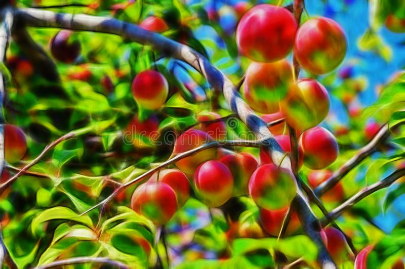 Fractal picture of cherry-plums on the plum tree royalty free stock images