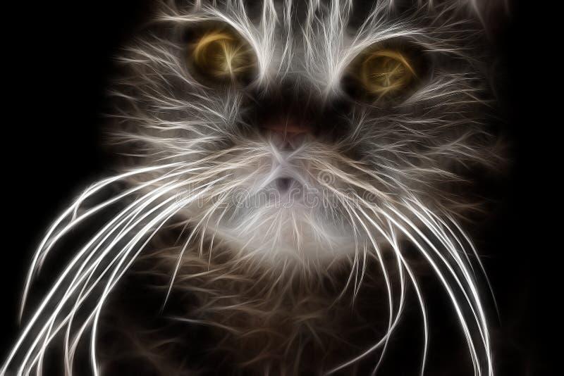 Fractalbild av en randig inhemsk katt royaltyfri illustrationer