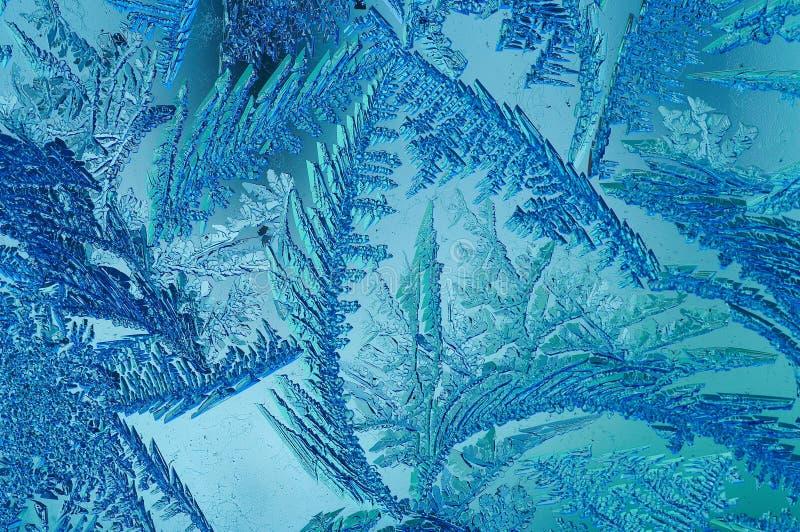 Fractales de glace photographie stock libre de droits