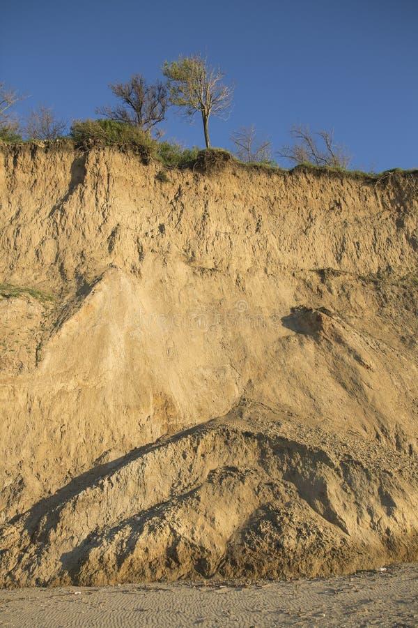 Fractura vertical del suelo de arcilla de Sandy con las raíces de la planta y la pequeña vegetación Cielo azul Costa de mar detrá imagenes de archivo