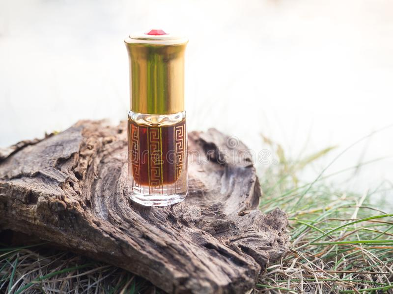 Fragancias árabes del perfume de la esencia del oud o del aceite del agarwood en mini botella fotografía de archivo libre de regalías