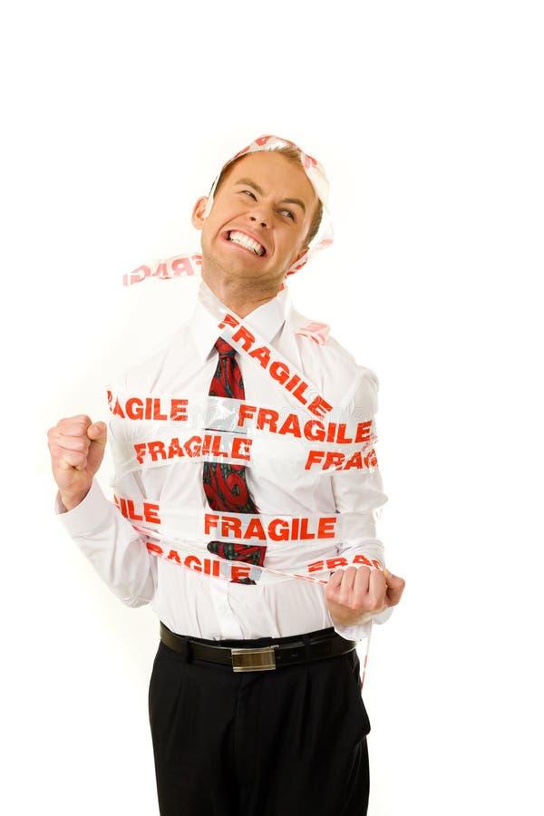 Fragile fotografia stock libera da diritti