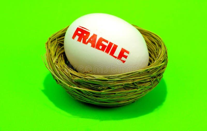 Download Fragile stock image. Image of chicken, green, break, savings - 81985