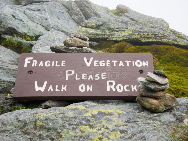 `Fragile vegetation`Sign. Can be killed by footsteps. Please stay on trails. Camels Hump mountain in Vermont.  stock photos