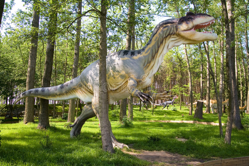 fragilis allosaurus royaltyfri foto