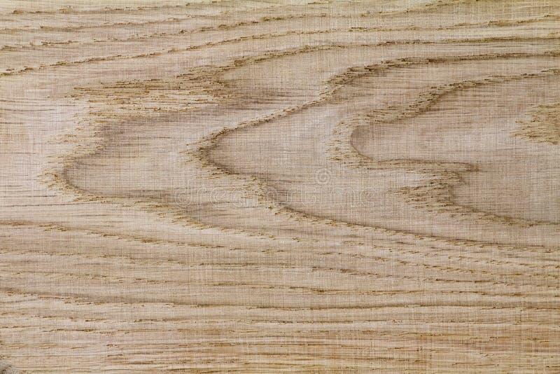 Fragment av brädena från ett naturligt träd - ek, (bakgrund I arkivbild