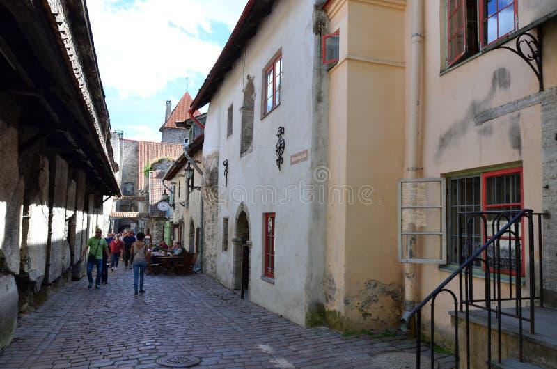 Fragment av den gamla staden - den forntida delen av Tallinn, huvudstaden av Estland arkivbild