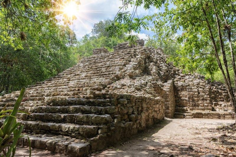 Fragment av en Mayan stenpyramid i djungeln av Coba arkivfoton