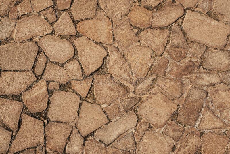 Fragment av en vägg från en kanstött sten royaltyfria bilder