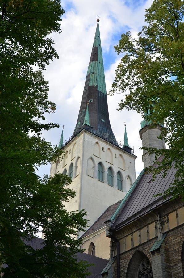 Fragment av kyrkan av Oleviste i gamla Tallinn arkivfoton