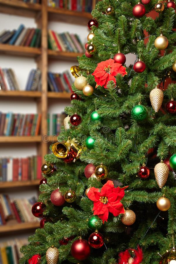 Fragment of a beautiful christmas tree with colorful decorations, cones, balls and ribbons with home library at the background royalty free stock photo