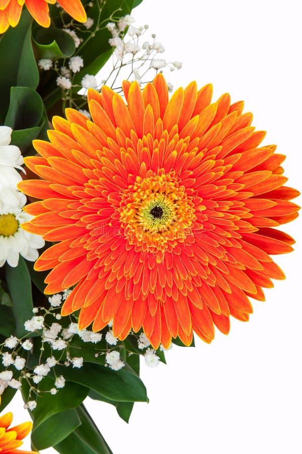 Download Fragment Of Bouquet Of Gerberas Stock Photo - Image: 31143420