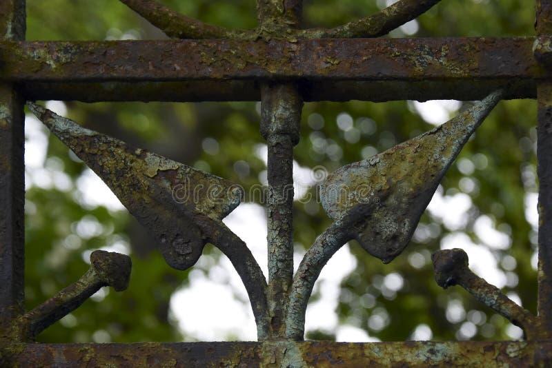 Fragment d'un vieux trellis en fer forgé dans la perspective de végétation verte image stock